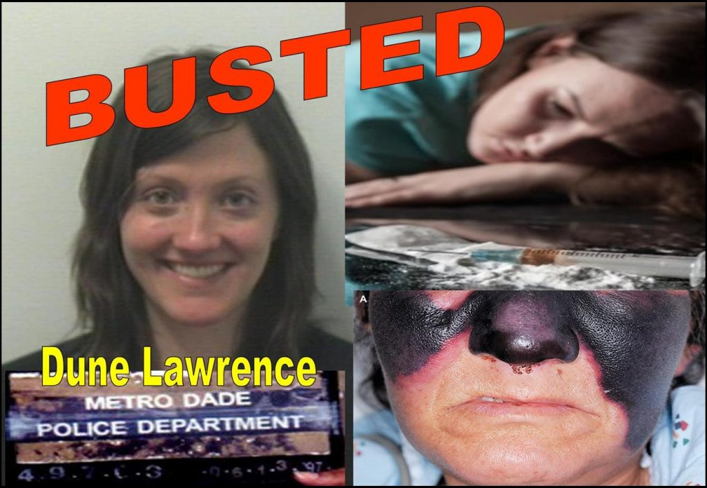 DUNE LAWRENCE, BLOOMBERG BUSINESSWEEK, REPORTER, BUSTED, FRAUD, BANNED FROM CHINA, RODDY BOYD, NICK BAKER, ANNIE MASSA, HANNA BOUVENG