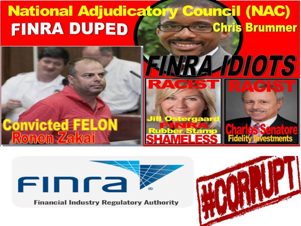 CHRIS BRUMMER, RICK KETCHUM, FINRA NAC, FINRA CORRUPTION