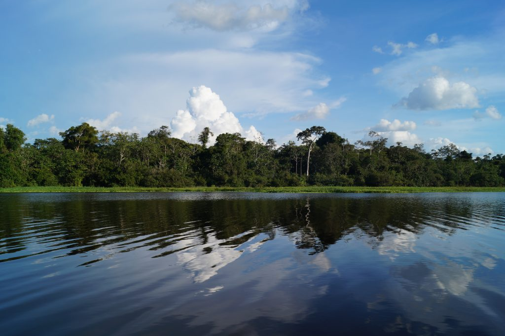 The toilet on Dawn on the Amazon is on the poop deck. If you pull back the curtain, this is your view while you go about your business. (photo by Kirsten Koza)