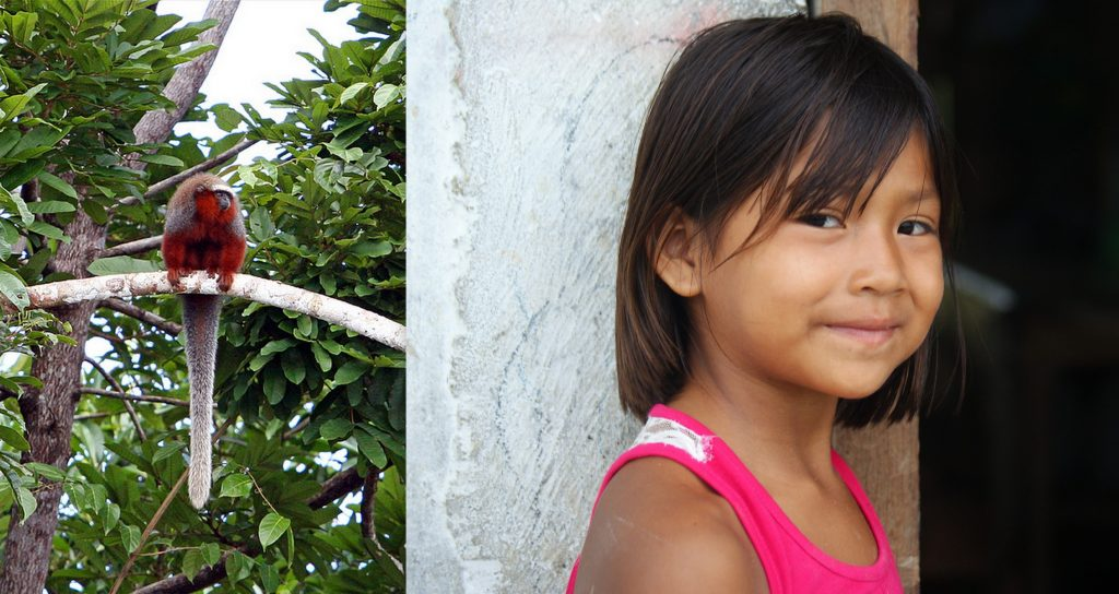 Dusky Titi monkey (left, photo by Dawn on the Amazon). Amazon girl (right, photo by Kirsten Koza)