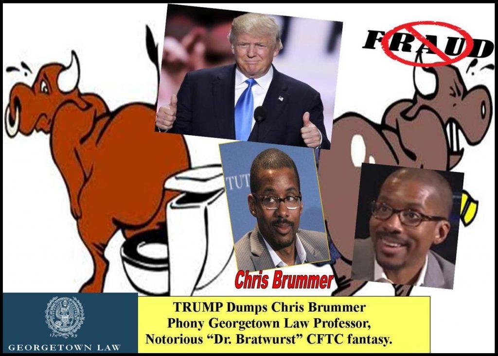 PRESIDENT TRUMP WITHDRAWS CHRIS BRUMMER, GEORGETOWN LAW PROFESSOR CFTC NOMINATION, FRAUDSTER, vorys, GERMANIC STUDIES