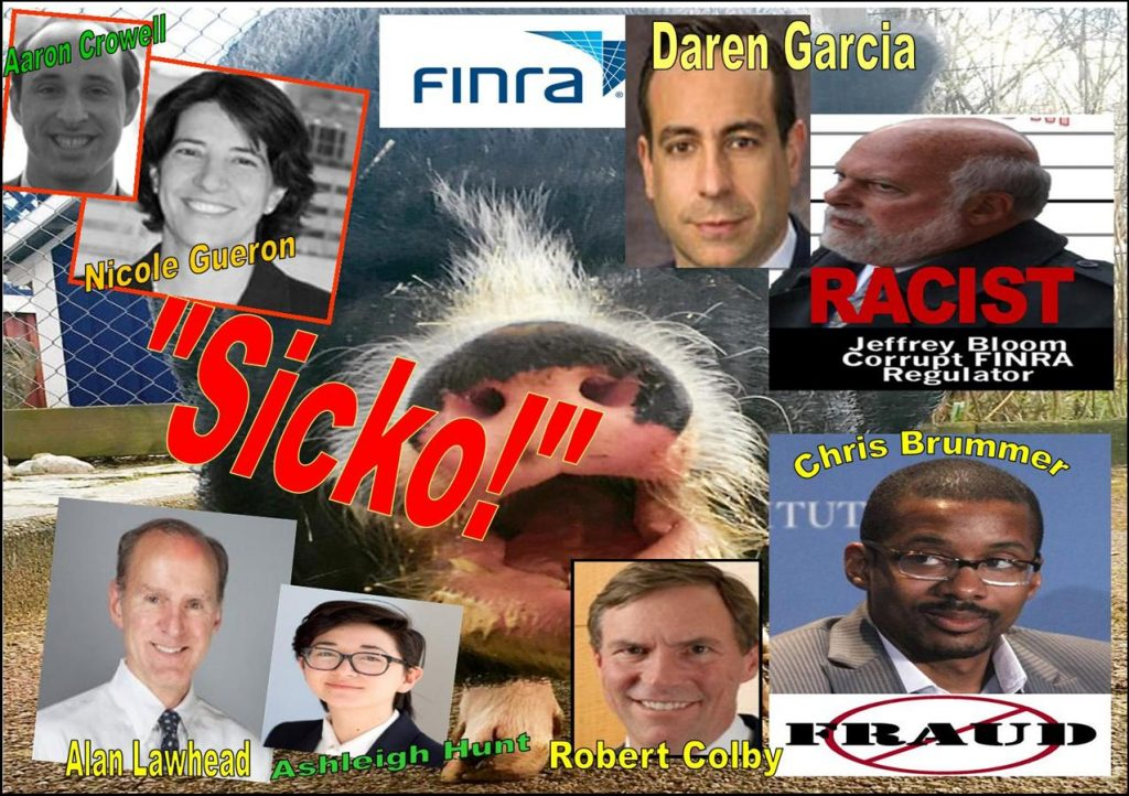 NICOLE GUERON, AARON CROWELL, ASHLEIGH HUNT, Clarick Gueron Reisbaum, Chris Brummer, Rachel Loko Brummer, Georgetown Law Center, Robert Colby, Alan Lawhead, FINRA, FINRA NAC, Daren Garcia, Vorys
