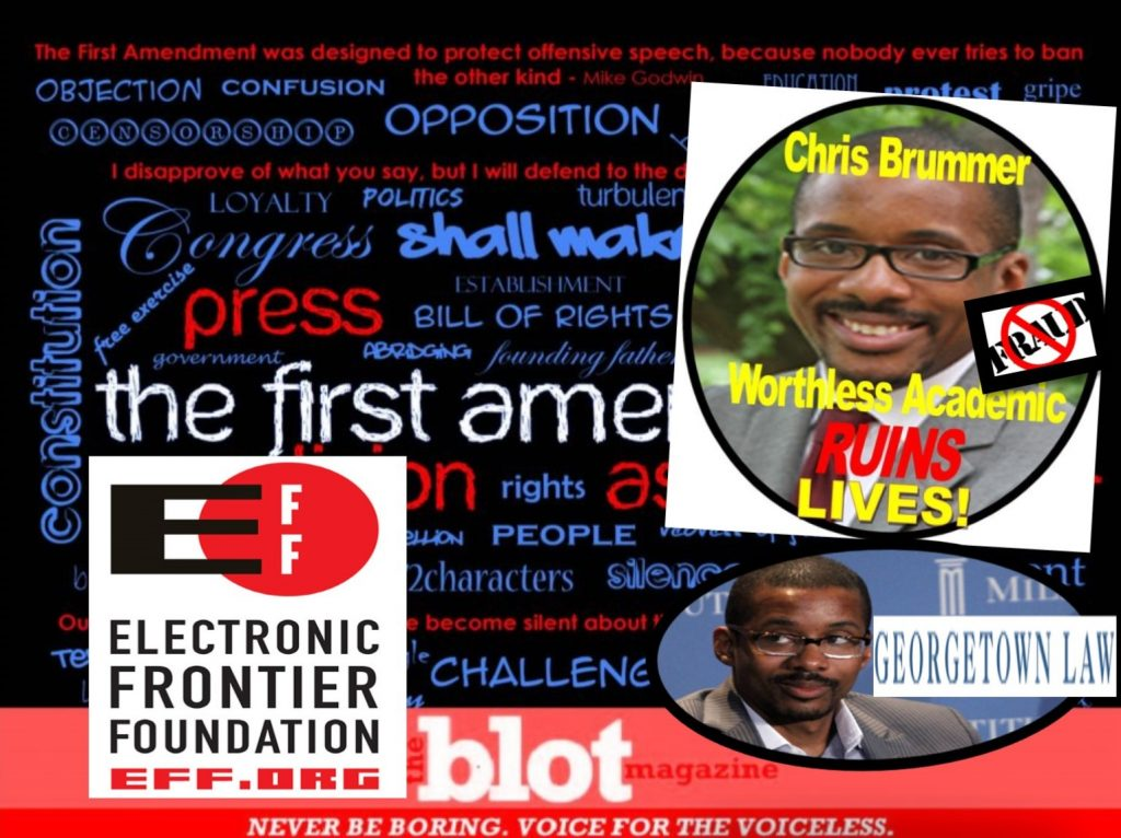 Defending Free Speech, TheBlot Magazine Wins Support from Electronic Frontier Foundation, Leading Academics against Rigged FINRA Abuses, Chris Brummer Fraud