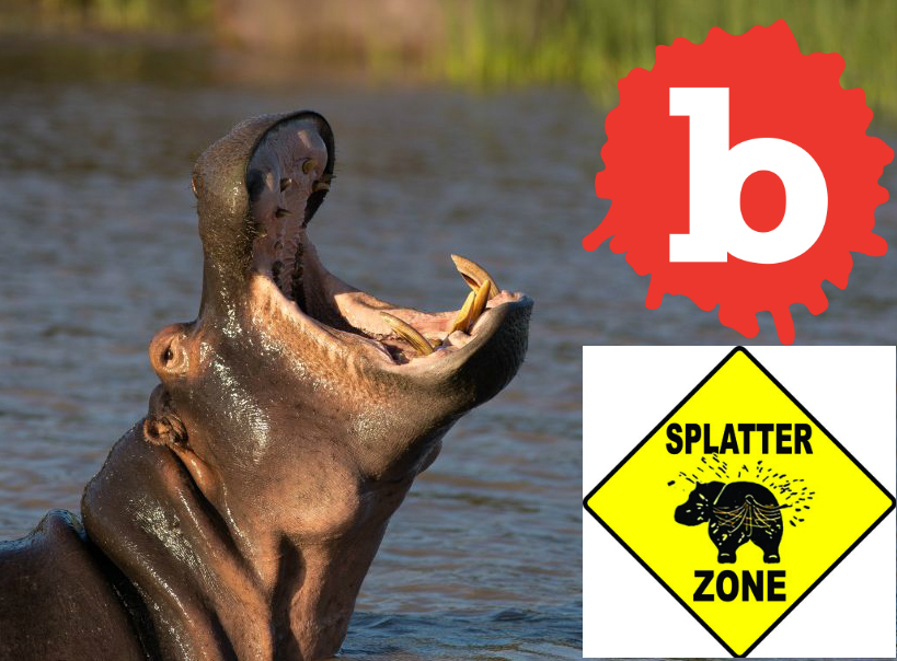 Hippo Poo Causes Mass Fish Kill in Africa's Mara River