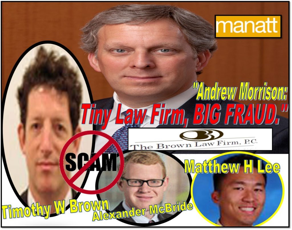 ANDREW L MORRISON, MANATT PHELPS PHILLIPS, lawyer, Timothy W Brown, Alexander McBride, Matthew H Lee, The Brown Law Firm, Oyster Bay, New York, derivative actions