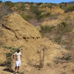 Giant 4,000 Year Old Termite Mounds Visible From Space