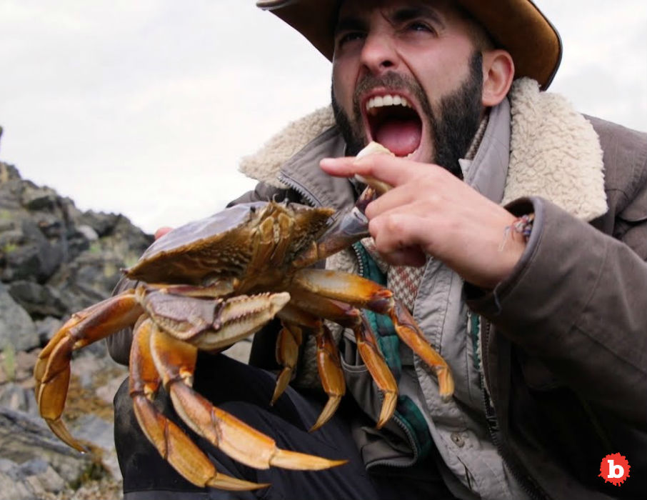 Pacific Crabbers Sue Big Oil Because of Devastating Blob