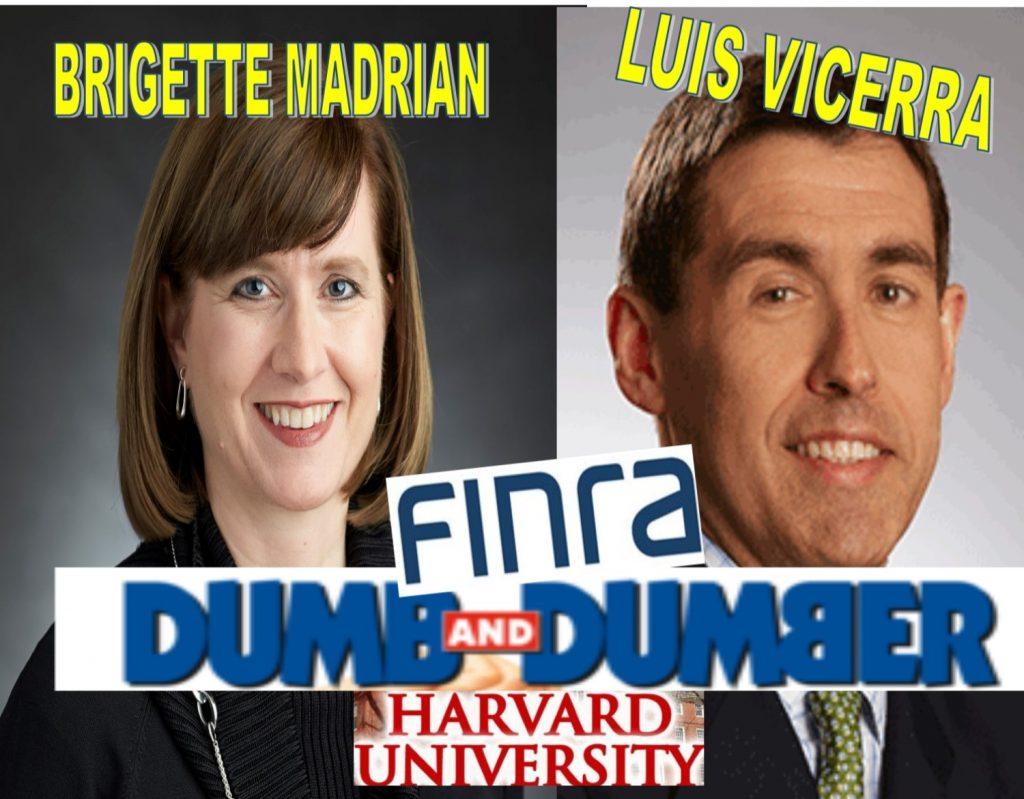 FINRA BOARD PUBLIC GOVERNORS BRIGITTE MADRIAN, LUIS VICEIRA, HARVARD PROFESSORS SHOW RACISM, HATE BLACKS
