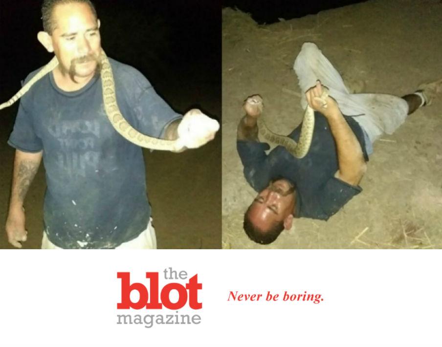 Arizona Man Poses with Rattlesnake Bites to Head and Neck