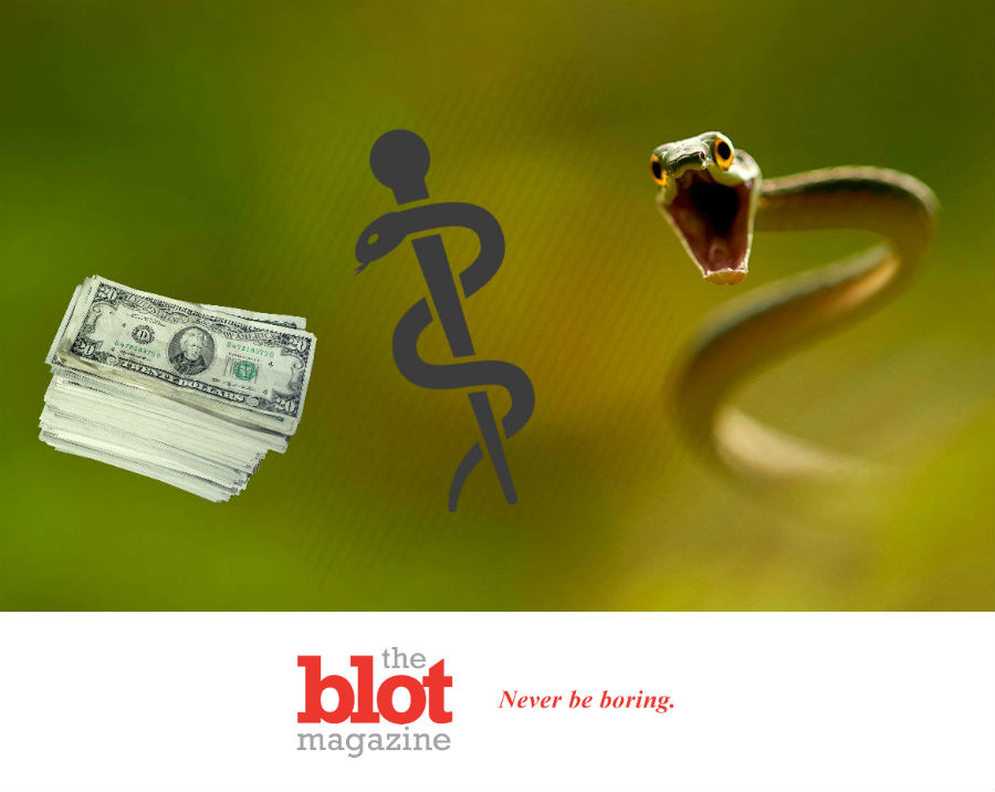 9-Year-Old Bit By Snake, Then Snakebit With Bills