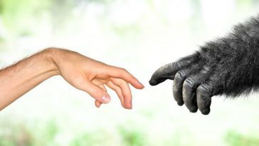 EEK! 40% of American Adults Believe God Created Humans 10,000 Years Ago