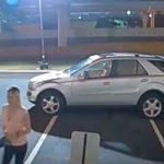 Botox Burglar Woman Uses Grinder Saw to Gain Entry