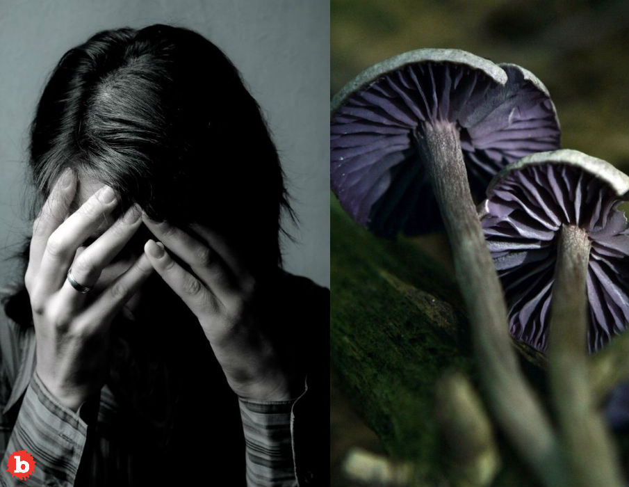 Got Depression? Magic Mushrooms May Soon Give Treatment