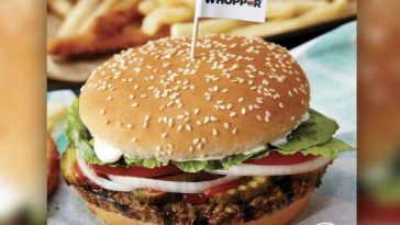 Rightwing Angry Over Burger King Piece, Damn That's Good