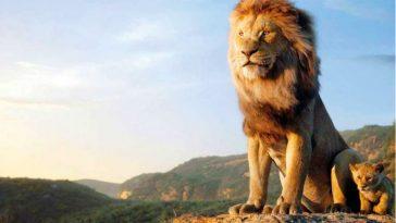 School Showed Lion King at Fundraiser, Disney Charges $ For Infringement
