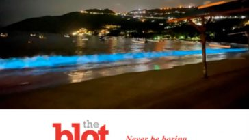 Acapulco Waters Light Up for First Time in 60 Years