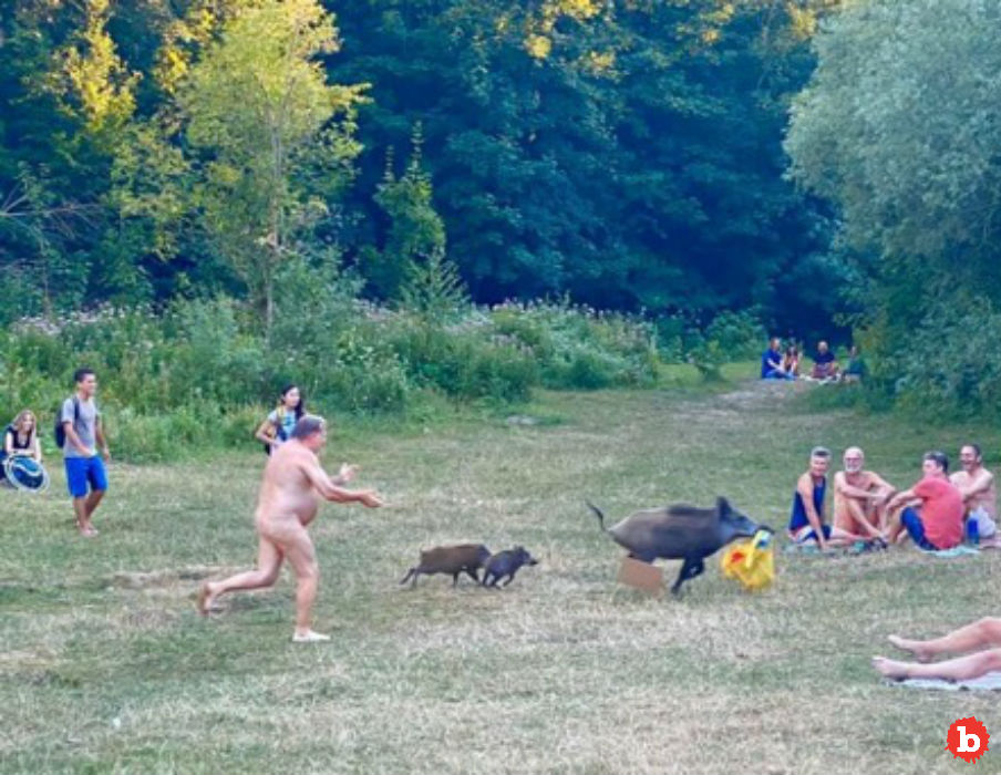 Buck Naked German Man Chases Wild Boar For Laptop Computer