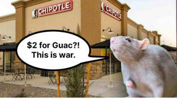 Attacking, Biting Rats Close New York City Chipotle