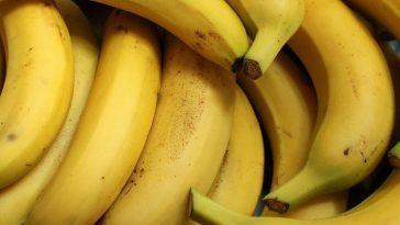 Kelowna, Canada Gets Huge Cocaine Shipment in Bananas