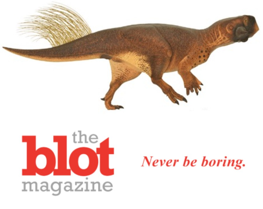 Paleontologist Talks About First Ever Perfect Dinosaur Butthole