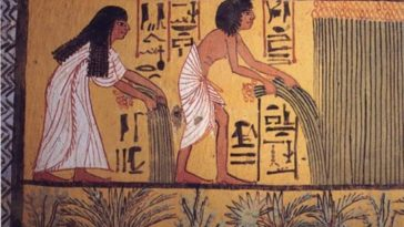 Amazing Discovery in Egypt, World's Oldest Mass Production Brewery (1)
