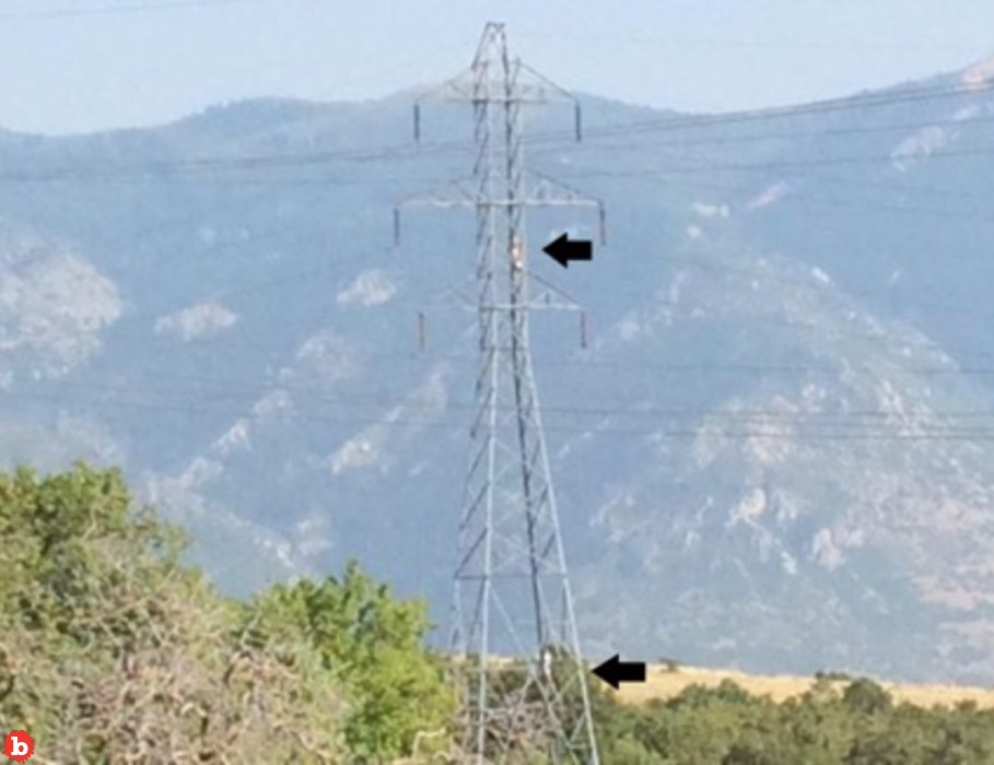 Utah Sherriff Issues PSA to Dumbasses: Don't Hang a Hammock Next to Power Lines
